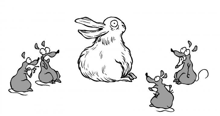 canard ou lapin