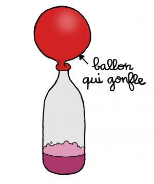 Le Ballon Autogonflant Espace Des Sciences